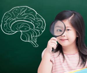 The Neuroscience of Child Development